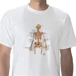 Anatomical T-Shirt Skeleton