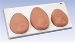 Breast Self Examination model, three single breasts on base