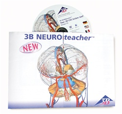 3B NEUROteacher, Network License