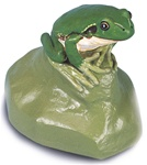 Tree Frog Replica, male (Hyla arborea)