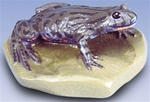 Fire-bellied Toad Replica (Bombina bombina)