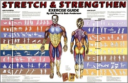 Stretch & Strengthen Anatomical Chart