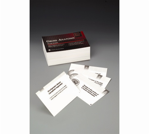 Brs Gross Anatomy Flash Cards Anatomy Study Guides