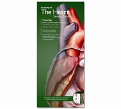 Anatomy of the Heart Pocket Study Guide - 2nd Edition