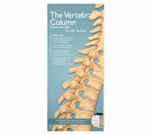 Vertebral Column and Spine Disorders Pocket Study Guide - 2nd Edition