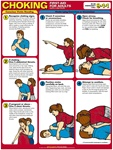 Choking First Aid For Adults Chart