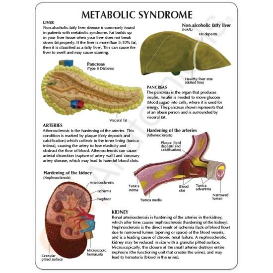alcoholic liver failure steroids