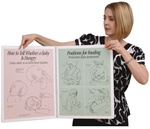 Breastfeeding Basics Spiral-bound Charts, Bilingual