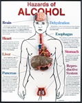 Hazards of Alcohol 3D FramedChart