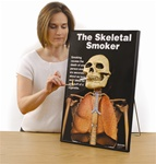 The Skeletal Smoker Display