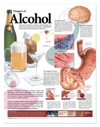 Dangers of Alcohol Anatomical Chart, Second Edition