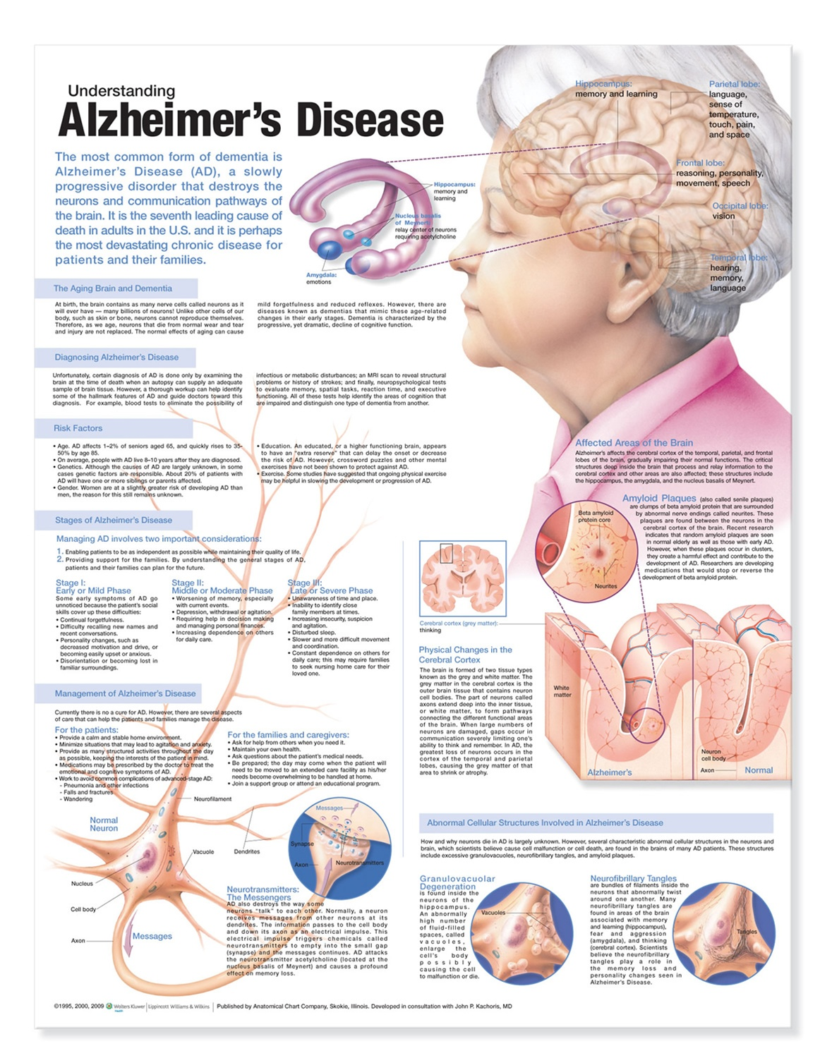 alzheimer's disease Amp will begin with three to five year pilot projects in three disease areas, including alzheimer's disease.