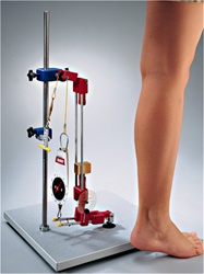 Complete Biomechanical Kit, Leg and Arm Models Included